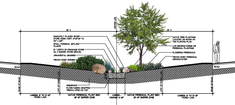 OCC Raingarden Section Graphic