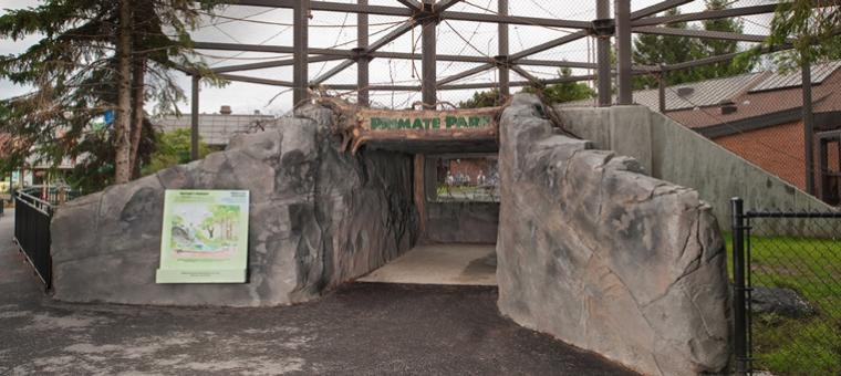Primate Viewing Tunnel